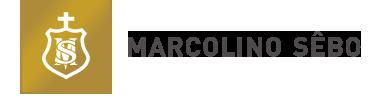 Marcolino Sebo Wines & Oils, Lda.